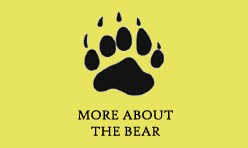 About the Bear